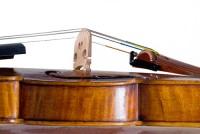 Violino Gasparo da Salò