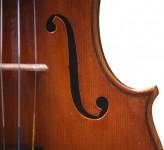 Violino Rogeri
