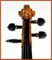 Violino Olimpia - dettaglio