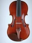Violino - fronte