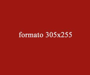 modello-formato-305x255